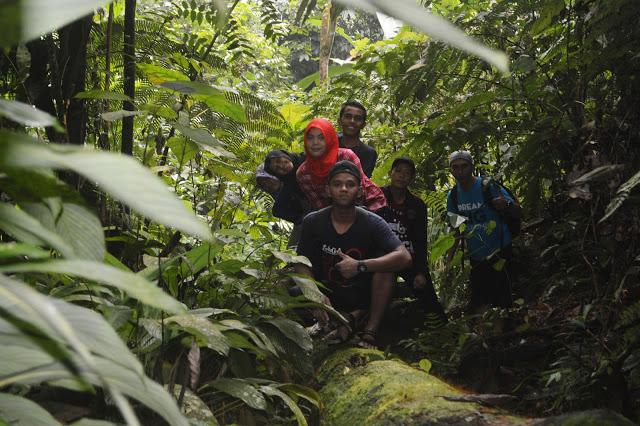 hutan gunung pandan
